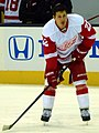 Tootoo Red Wings 2013 01 21.jpg