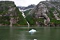 Tracy Arm Fjord - panoramio.jpg