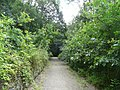TransPennine Trail - geograph.org.uk - 905476.jpg