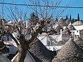 Trulli Alberobello01 apr06.jpg