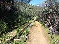 Tuolumne County, CA, USA - panoramio (25).jpg