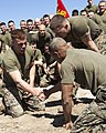 U. S. Marines assigned to Battalion Landing Team (BLT) 3-2 conduct a Marine Corps Martial Arts grappling session during a motivational run on Onslow Beach, N.C., March 4, 2013 130304-M-SO289-025.jpg