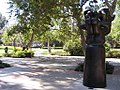 UCLA Franklin D. Murphy Sculpture Garden picture 3.jpg