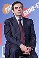 UMP regional elections Paris 2010-01-21 n7.jpg
