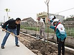 USAID supports tree planting in Nam Dinh Province (32503525963).jpg