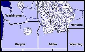 Westslope cutthroat trout - Image: USFWS Historic US Range Westslope Cutthroat Trout
