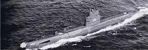 USS Wahoo (SS-565)
