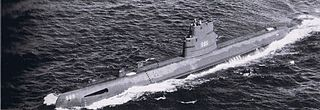USS <i>Wahoo</i> (SS-565)