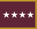 US Army Medical Department General Flag.png