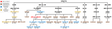 A schematic diagram of the Umayyad ruling family during the caliphate of Abd al-Malik