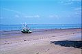Un chalutier de pêche côtière (35).jpg