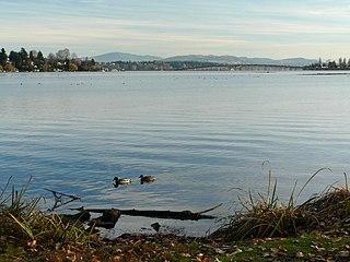 Union Bay (Seattle) Bay of Lake Washington in Seattle