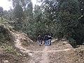 Upper Sittong, Darjeeling 02.jpg