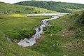 Uvac Lake, Pešter (Pester plateau) 7378.NEF.jpg