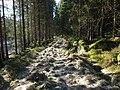 Veien til Stomnås - panoramio (5).jpg