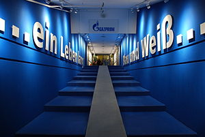 Veltins-Arena - The players' tunnel.