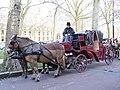 Versailles Horse-drawn landau 2006-11-13.jpg