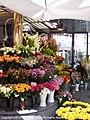 Vienna flora edited-1.jpg