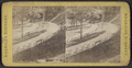 View at Congress Park, Saratoga, from Robert N. Dennis collection of stereoscopic views.png