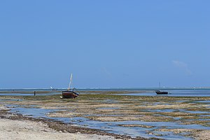 View out to sea on Nyali Beach next to the Reef Hotel during low tide and still conditions in Mombasa, Kenya.jpg
