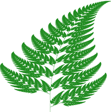 Barnsley fern plotted with Processing