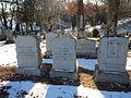Volck graves.JPG