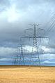 Voltage (267429207).jpg