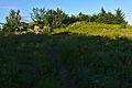 Vrchol Kamenná lúka, Národný park Poloniny.jpg