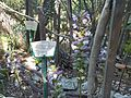 Vue du jardin L'Hardy-Denonain.jpg