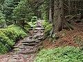 Wanderweg Natursteinpflaster.jpg