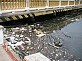 Waste01.jpg