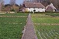Watercress beds at Broad Chalke - geograph.org.uk - 401937.jpg