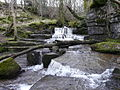 Waterfall above Dent - geograph.org.uk - 696493.jpg