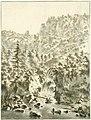 Waterval bij de Grand Chartreuse, RP-T-1905-85.jpg