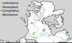 Biogeography - Image: Wegener fossils mapped