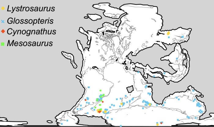 Distribution of four Permian and Triassic fossil groups used as biogeographic evidence for continental drift, and land bridging