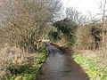 West Hurn, Dales Lane - geograph.org.uk - 1154149.jpg