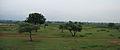 Western Railway - Views from an Indian Western Railway journey on a Monsoon Season (8).JPG