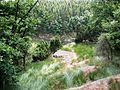 Widok na Dolinę Echa - panoramio.jpg