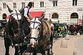 Wien (10544332024).jpg