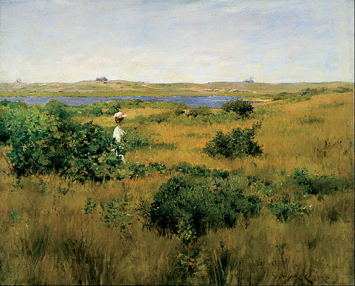 William Merritt Chase - Summer at Shinnecock Hills - Google Art Project