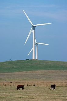 Wind Farm Outside Port Fairy.jpg