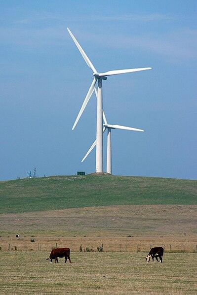 Australiska vindkraftverk.