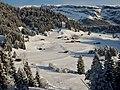 Winterlandschaft bei Laax - panoramio.jpg