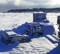 Wood And Snow - panoramio.jpg