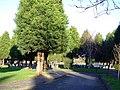 Woodside Cemetery - geograph.org.uk - 316423.jpg