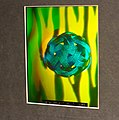 Wooster Hologram (8773758417).jpg