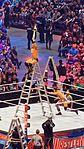 WrestleMania 32 2016-04-03 18-27-28 ILCE-6000 8930 DxO (27226607273).jpg