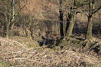 Wuppertal Metzmachersrath 2015 035.jpg