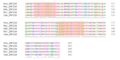 ZNF226 Ortholog Multiple Sequence Alignment 5.png